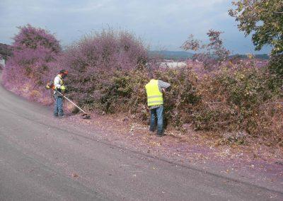Καθαρισμος ταφρων και εργασιες πρασινου στο οδικο δικτυο Π.Ε. Ευβοιας