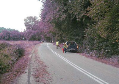 Καθαρισμός τάφρων και εργασίες πρασίνου στο οδικό δίκτυο Π.Ε. Εύβοιας | Dasikosxartis.gr
