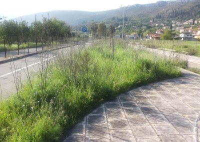 Εργασίες Εγκατάστασης Πρασίνου -> ΠΡΙΝ | Dasikosxartis.gr