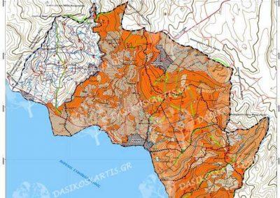 Διαχειριστικός χάρτης ιδιωτικού δάσους Γλυφάδας | Dasikosxartis.gr