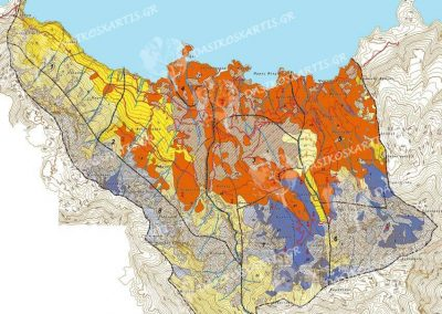 Διαχειριστικός χάρτης Ιδιωτικού δάσους Βλαχιάς | Dasikosxartis.gr