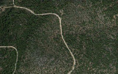 ΣτΕ: Εκτός του Δασικού Χάρτη Εκτάσεις Οικοδομικού Συνεταιρισμού