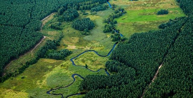 Οι προτάσεις της Π.Κ. Δασολόγων για τους δασικούς χάρτες και τις Επιτροπές Εξέτασης Αντιρρήσεων